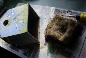 What The Birdhouse Told Me