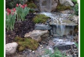 water fall with tulips image
