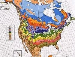 USDA_Hardiness_zone_map | birds and blooms blog