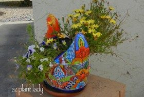 Ceramic chicken planter filled with flowers.