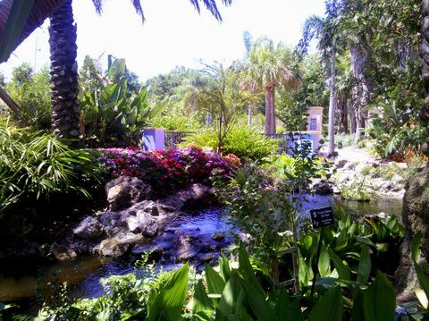 Places To Go Things To Do Florida Botanical Gardens Birds And Blooms