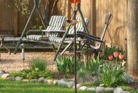 orchard oriole | baltimore oriole | birdsandbloomsblog.com | paula bonelli | midwest regional reporter