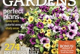 Birds & Blooms Easy Container Gardens