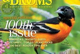 Birds & Blooms, August/September issue.