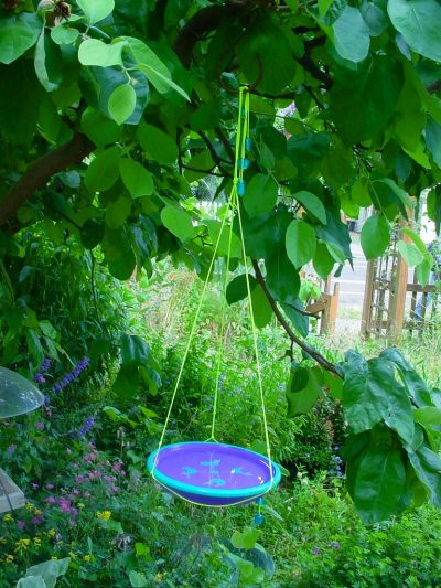Birdbath hung in the shade of a tree
