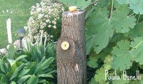 recycled tree stump | birds and blooms blog | paula bonelli