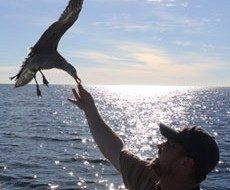 Corey Finger of 10,000 Birds
