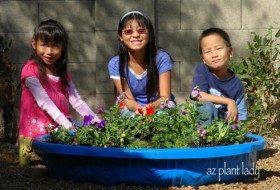 Children_pool_garden