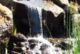 Man made waterfall at the Oregon Gardens