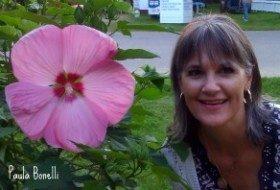 hibiscus blossom | birdsandbloomsblog.com | paula bonelli