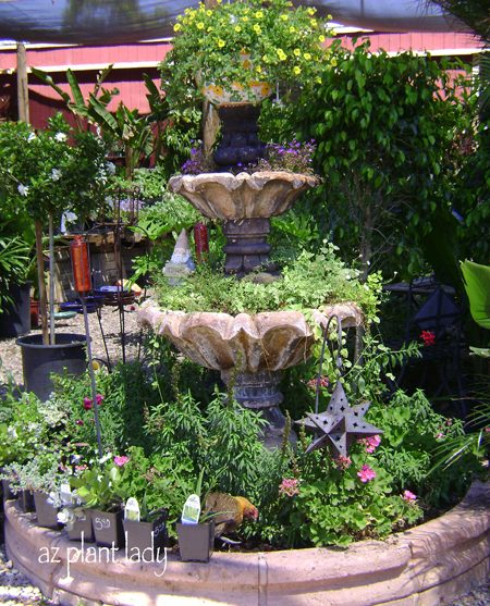 fountain planter