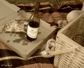 picnic   paula bonelli   birdsandbloomsblog.com