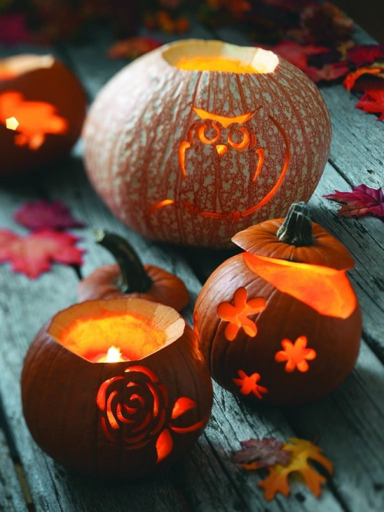 Carving Pumpkins: Inspiration From Nature