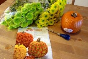 Working for the Weekend: Mum Up Your Pumpkin!