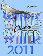 Places to Go, Things to Do: Wings Over Water in the Outer Banks