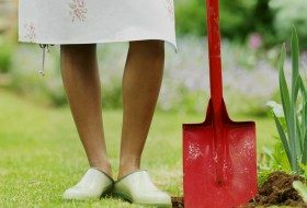 Preparing Soil for Spring Planting