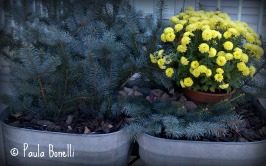 fall planter decor | paula bonelli | paulasgardenpatch.com