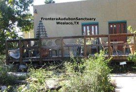 Birding hotspot in So. Texas:  Frontera Audubon Sanctuary