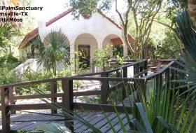 Sabal Palm Sanctuary-birding hotspot extraordinaire