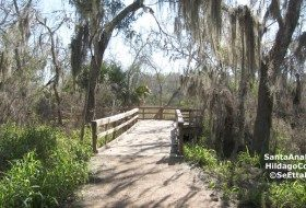 Santa Ana and Laguna Atascosa National Wildlife Refuges-birding hotspots+