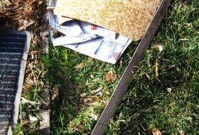 Cardboard gardening:  turning lawn into garden bed