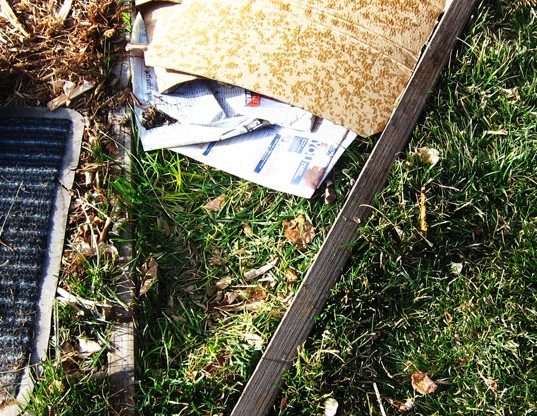 Placing newspaper  topped with cardboard over grass