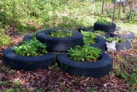 Recycled Backyard: Tire Gardens
