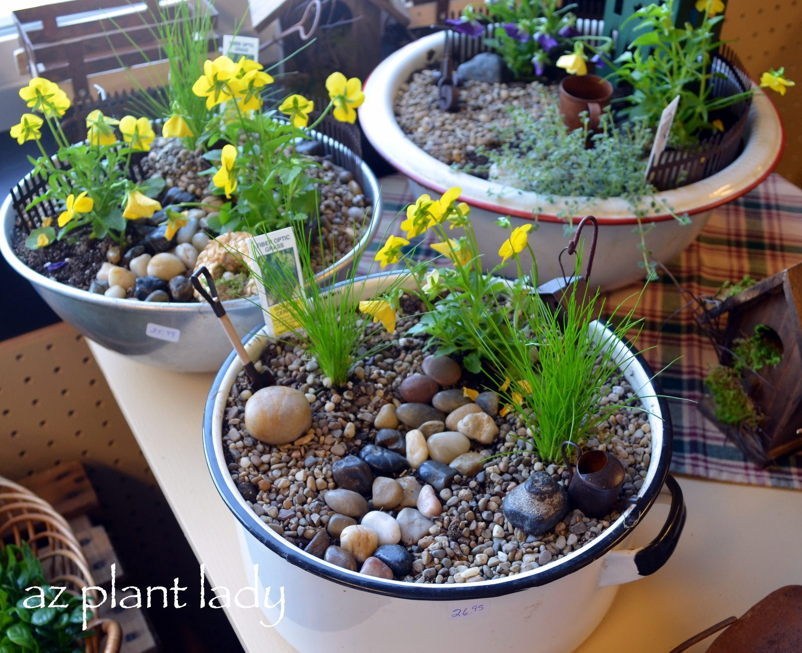 How to make a fairy garden container birds and blooms for Fairy garden box ideas