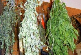 DIY Drying Herbs: Part 2