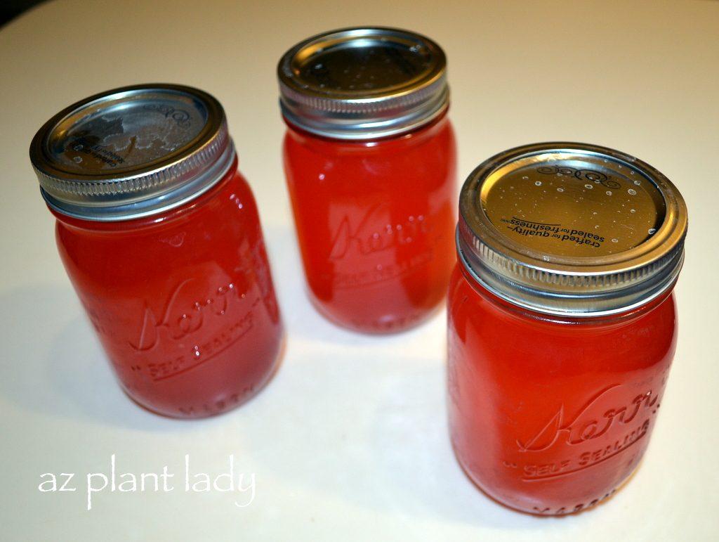 Herb Infused Flavored vinagres - una pila de platos