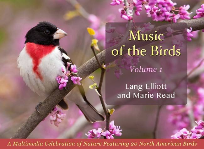 Music of the Birds Volume 1