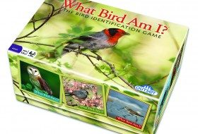 10225-what-bird-am-i-package