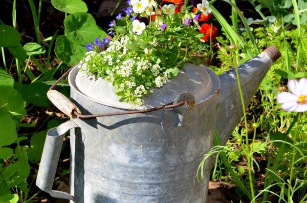 watering-can-planter