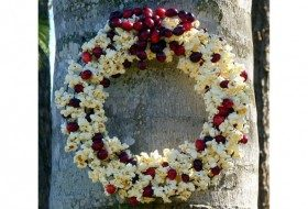 Popcorn Cranberry DIY Bird Feeder Wreath