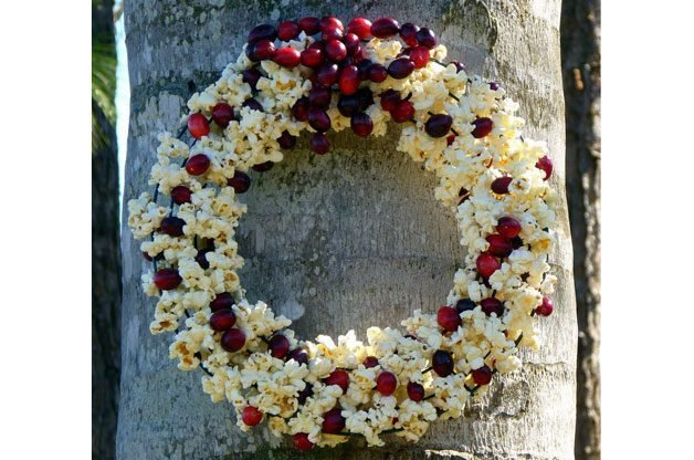 This DIY bird feeder wreath idea is simple and classic – a different twist on the once so popular popcorn and cranberry strings on trees.