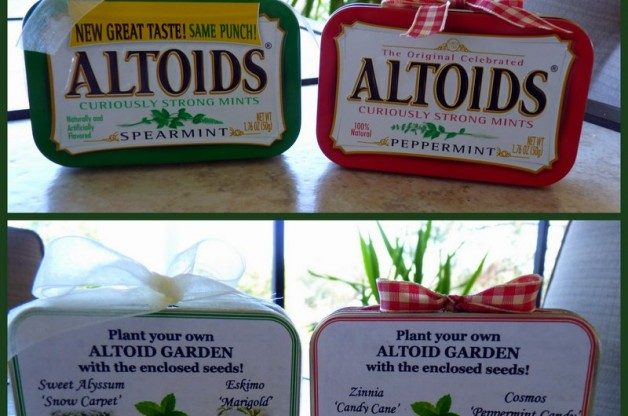 Altoids Gardens in a Tin by J Staake