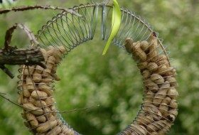Slinky DIY Bird Feeder for Peanuts