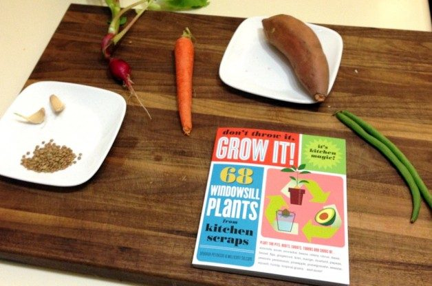 grow-vegetables-from-scraps