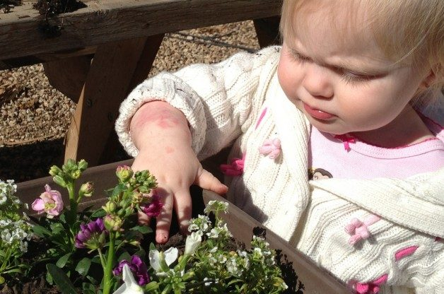 introducing children to the joys of gardening is a great way to grow a new generation of gardeners