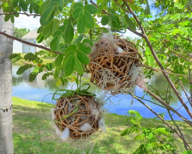 Diy birdhouses diy grapevine balls for nesting birds - How to build a grape vine support the natural roof ...