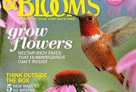June/July issue, Birds & Blooms