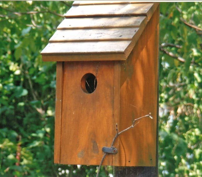Friday Fun Photo: Bluebird House