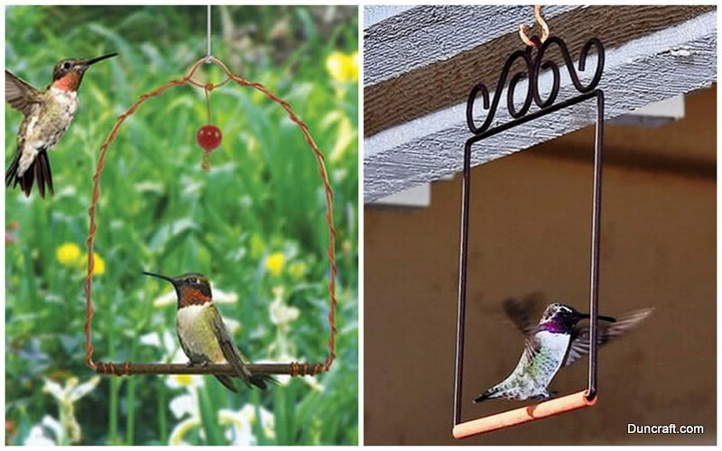 Hummingbird Swings Duncraft.com