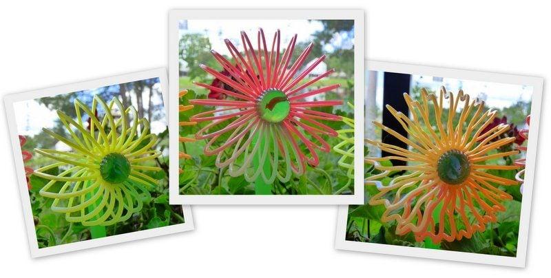 Slinky Flowers by Jill Staake