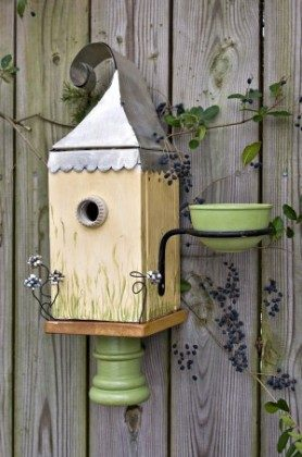 Attracting Bluebirds Nest Box Feeder