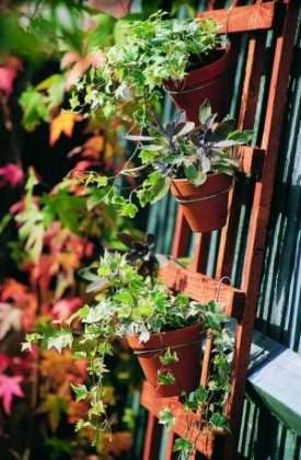 Clay Pot Trellis