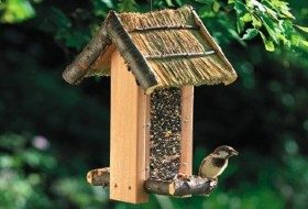 Cozy Cabin Bird Feeder