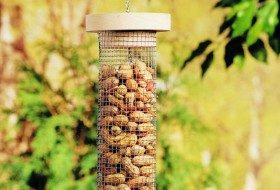 DIY Bird Feeder for Peanuts