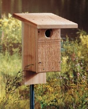 DIY Birdhouse for Bluebirds Backyard Projects Birds and Blooms