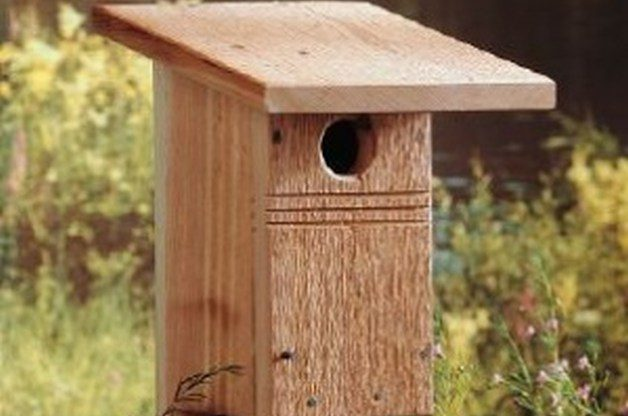 Diy birdhouse for bluebirds backyard projects birds for Building a quail house